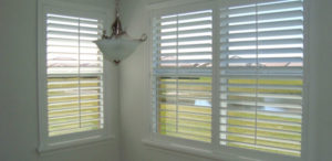 View out a Plantation Shutters